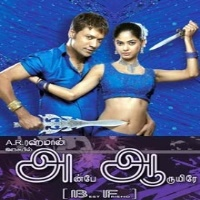 Anbe Aaruyire 2005 Tamil Mp3 Songs Free Download Masstamilan Isaimini Kuttyweb